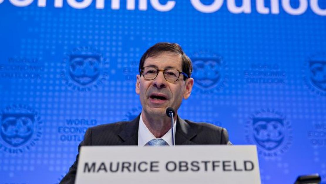 Chief Economist of the IMF Maurice Obstfeld